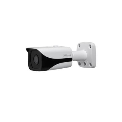 دوربین مداربسته تحت شبکه داهوا Dahua Network Camera IPC-HFW81230E-Z